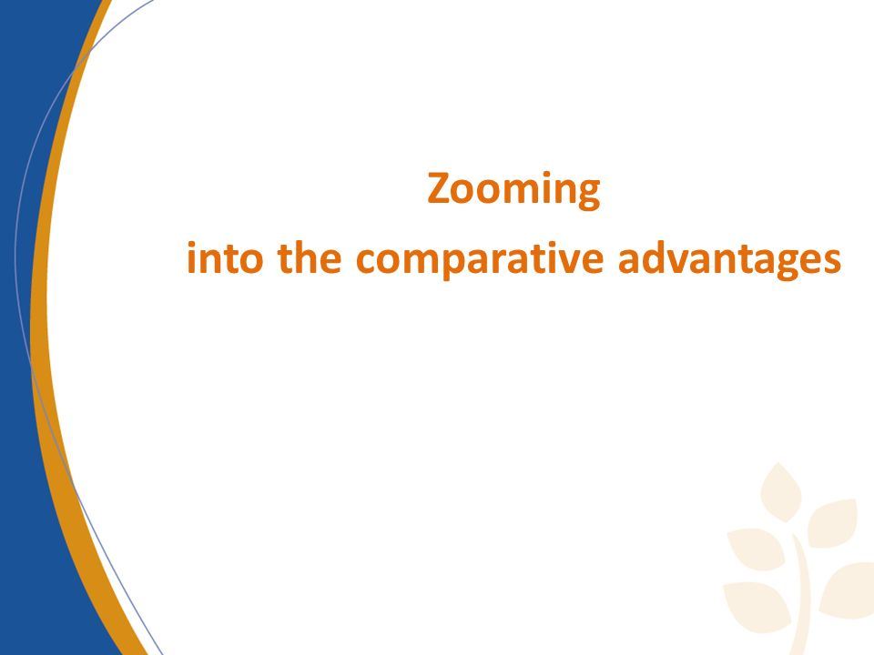 Zooming into the comparative advantages