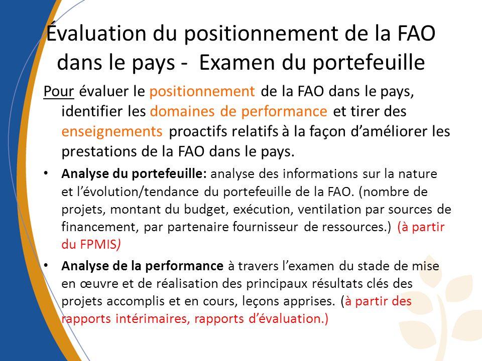 Évaluation du positionnement de la FAO dans le pays - Examen du portefeuille