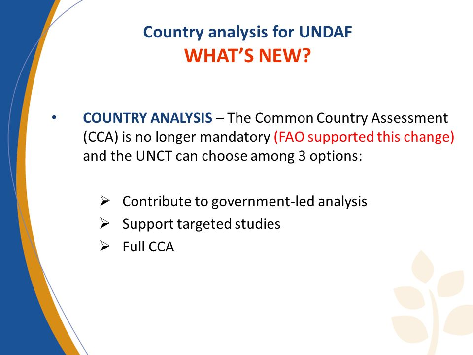 Country analysis for UNDAF WHAT'S NEW