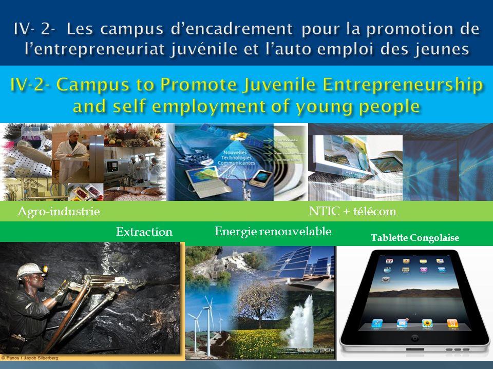 IV- 2- Les campus d'encadrement pour la promotion de l'entrepreneuriat juvénile et l'auto emploi des jeunes