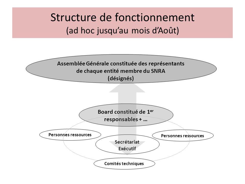 Structure de fonctionnement (ad hoc jusqu'au mois d'Août)