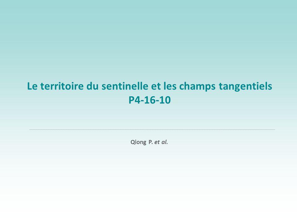 Le territoire du sentinelle et les champs tangentiels P4-16-10