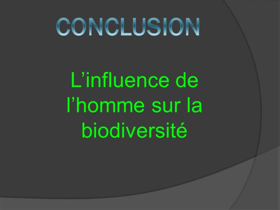 L'influence de l'homme sur la biodiversité