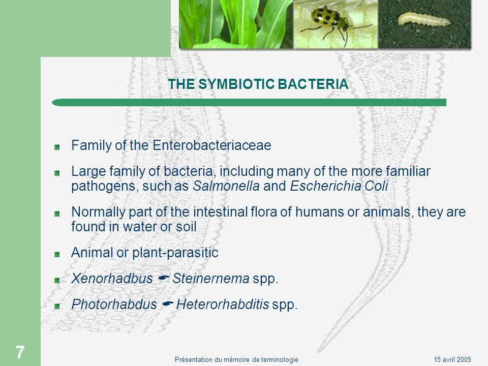 THE SYMBIOTIC BACTERIA