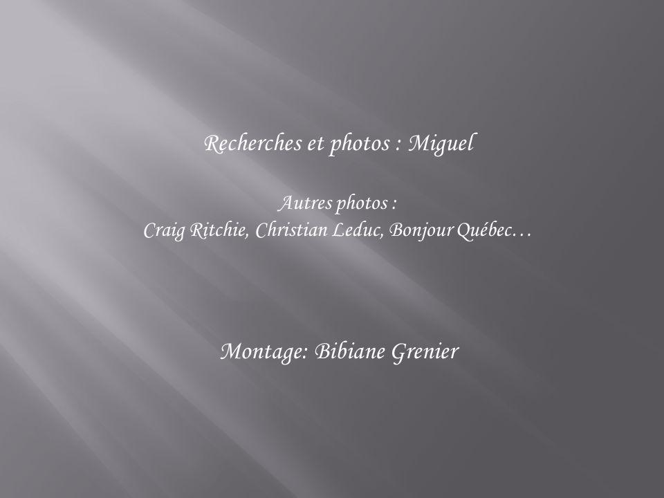 Recherches et photos : Miguel
