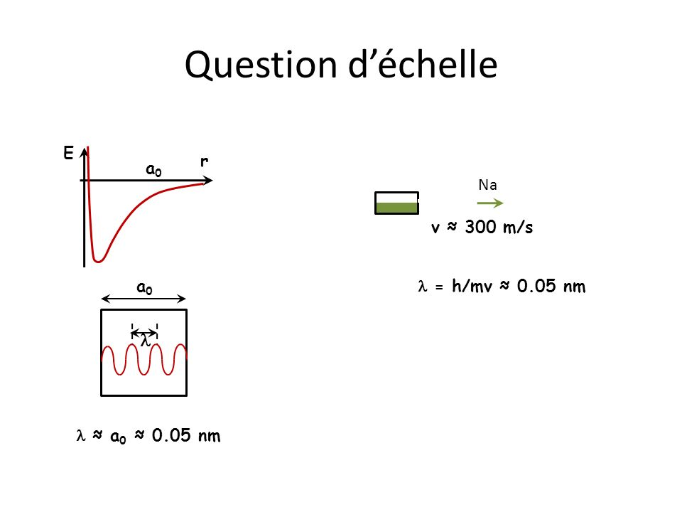 Question d'échelle l r E a0 Na l = h/mv ≈ 0.05 nm v ≈ 300 m/s a0