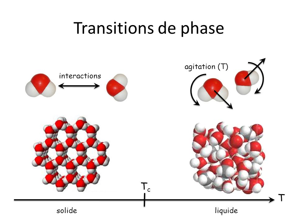 Transitions de phase agitation (T) interactions Tc T solide liquide