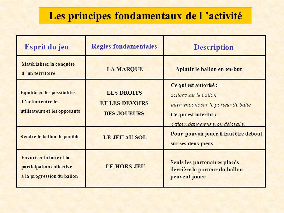 Les principes fondamentaux de l 'activité