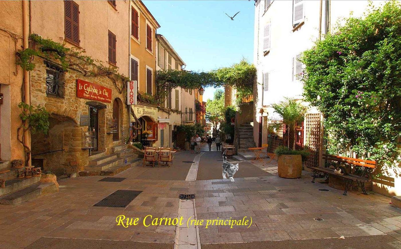 Rue Carnot (rue principale)