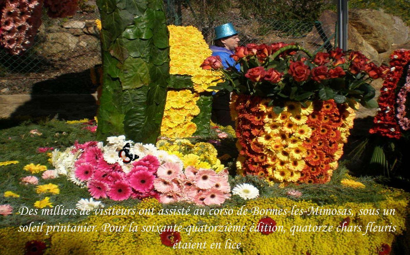 Des milliers de visiteurs ont assisté au corso de Bormes-les-Mimosas, sous un soleil printanier.
