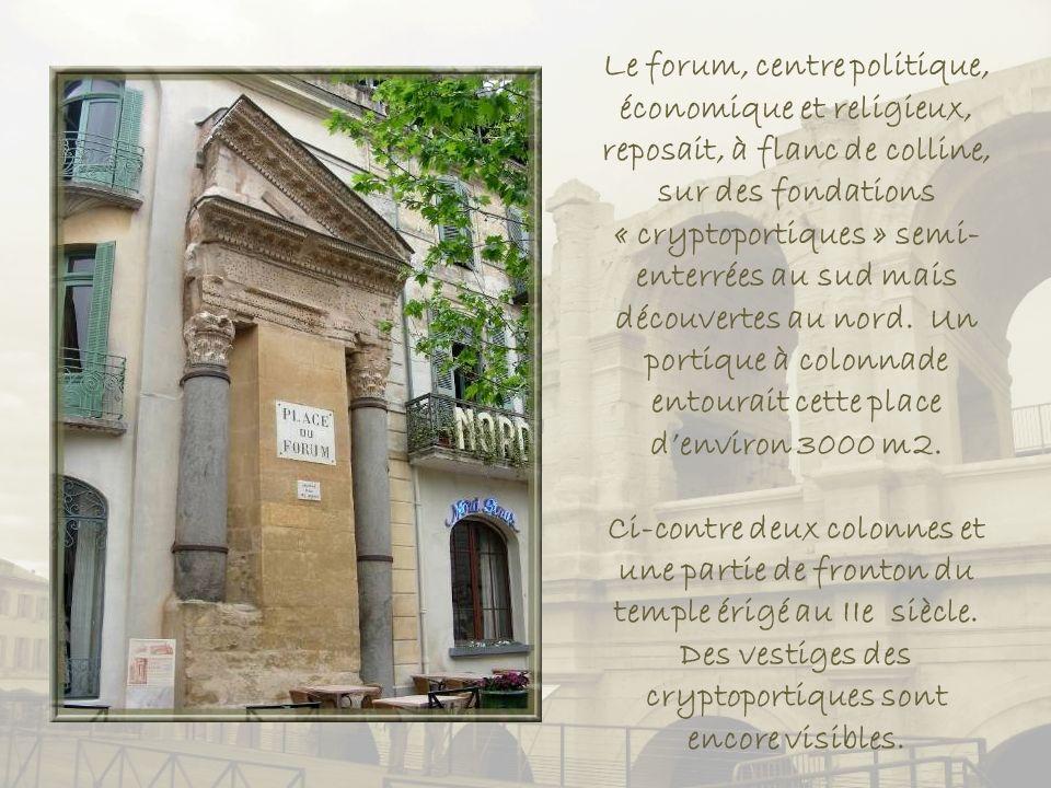Le forum, centre politique, économique et religieux, reposait, à flanc de colline, sur des fondations « cryptoportiques » semi-enterrées au sud mais découvertes au nord. Un portique à colonnade entourait cette place d'environ 3000 m2.