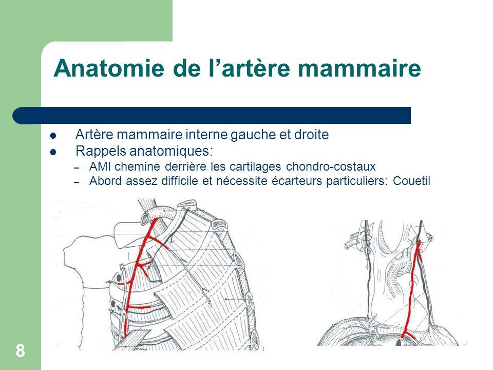 Anatomie de l'artère mammaire