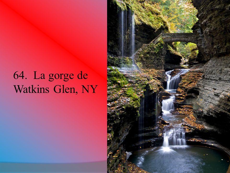 64. La gorge de Watkins Glen, NY