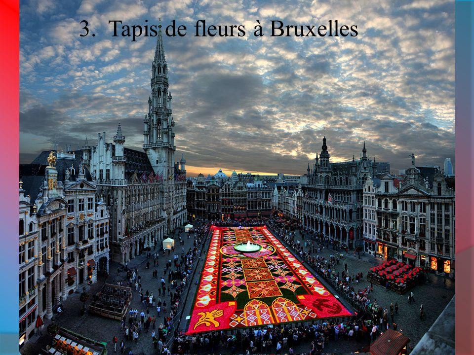 3. Tapis de fleurs à Bruxelles