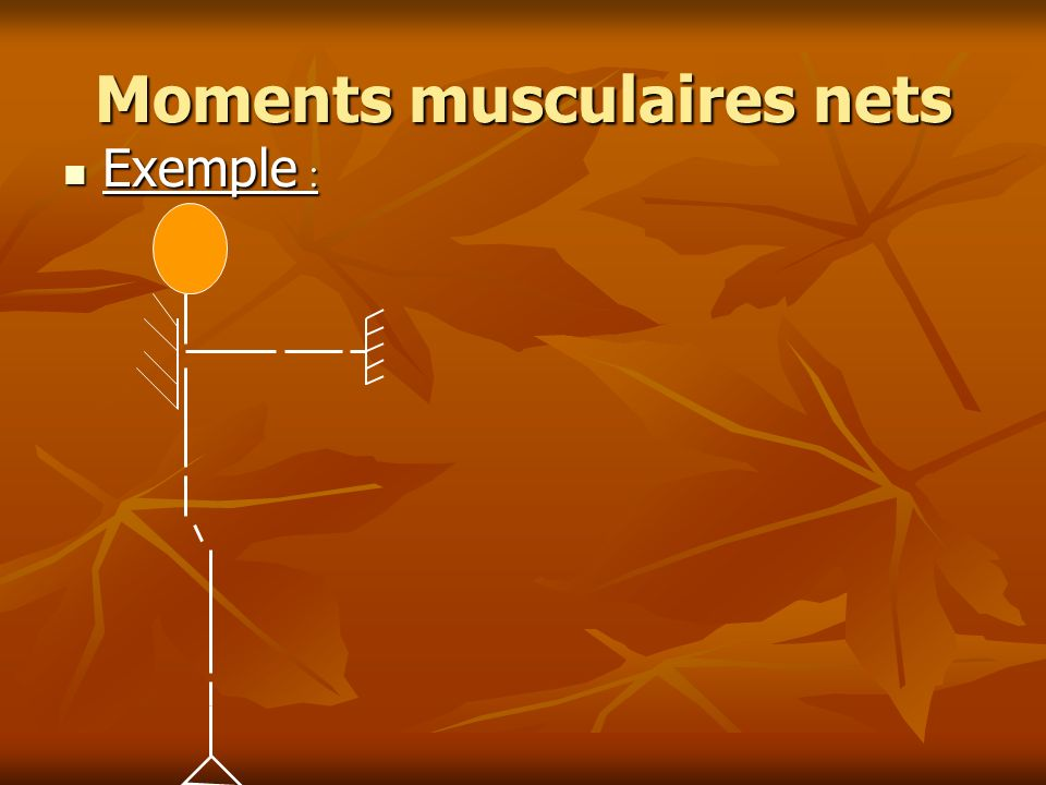 Moments musculaires nets