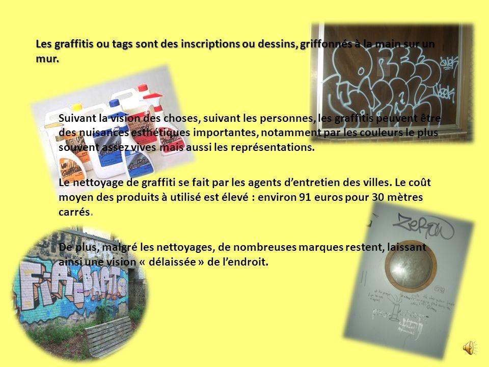 Les graffitis ou tags sont des inscriptions ou dessins, griffonnés à la main sur un mur.