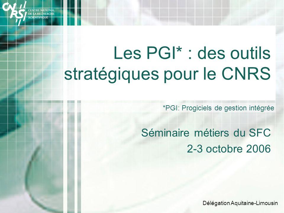 Les PGI* : des outils stratégiques pour le CNRS