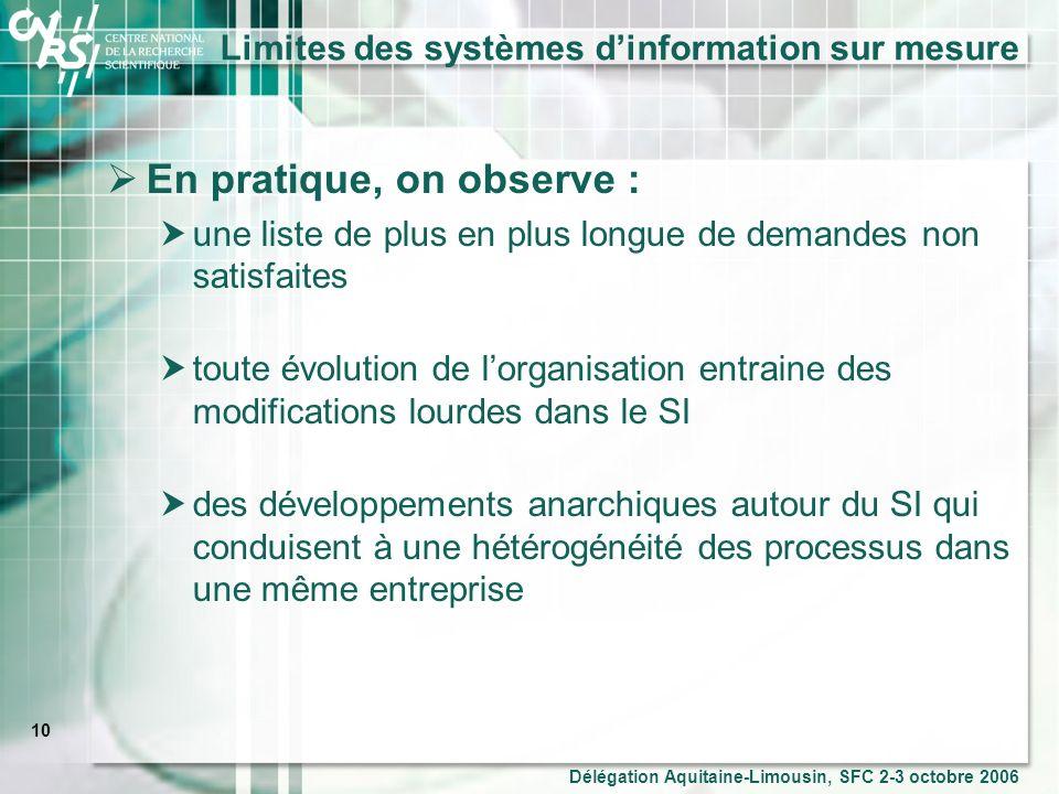 Limites des systèmes d'information sur mesure