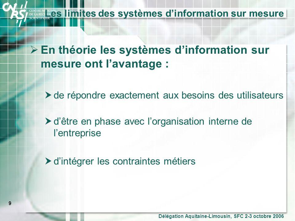 Les limites des systèmes d'information sur mesure