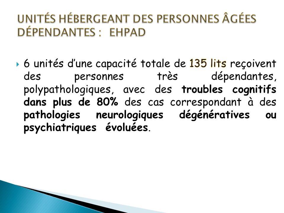 Unités hébergeant des personnes âgées dépendantes : EHPAD