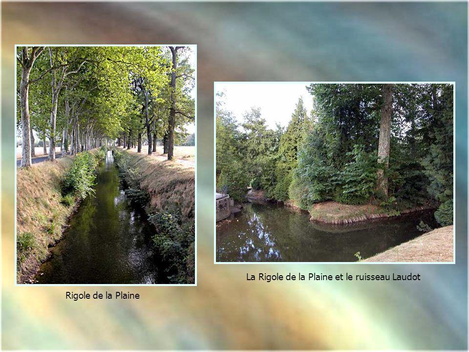 La Rigole de la Plaine et le ruisseau Laudot