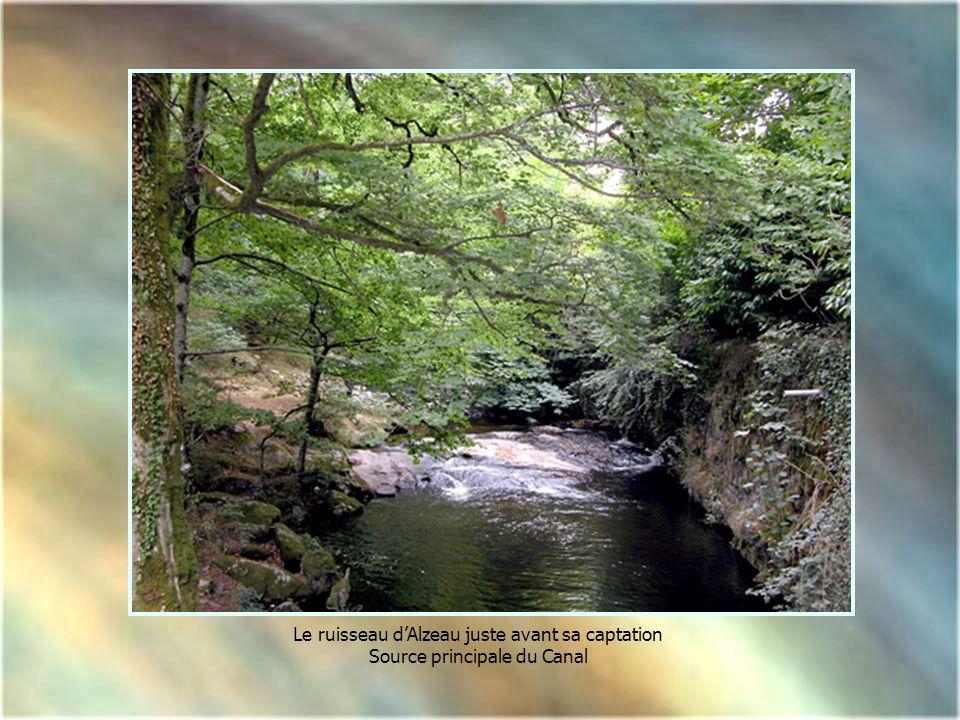 Le ruisseau d'Alzeau juste avant sa captation
