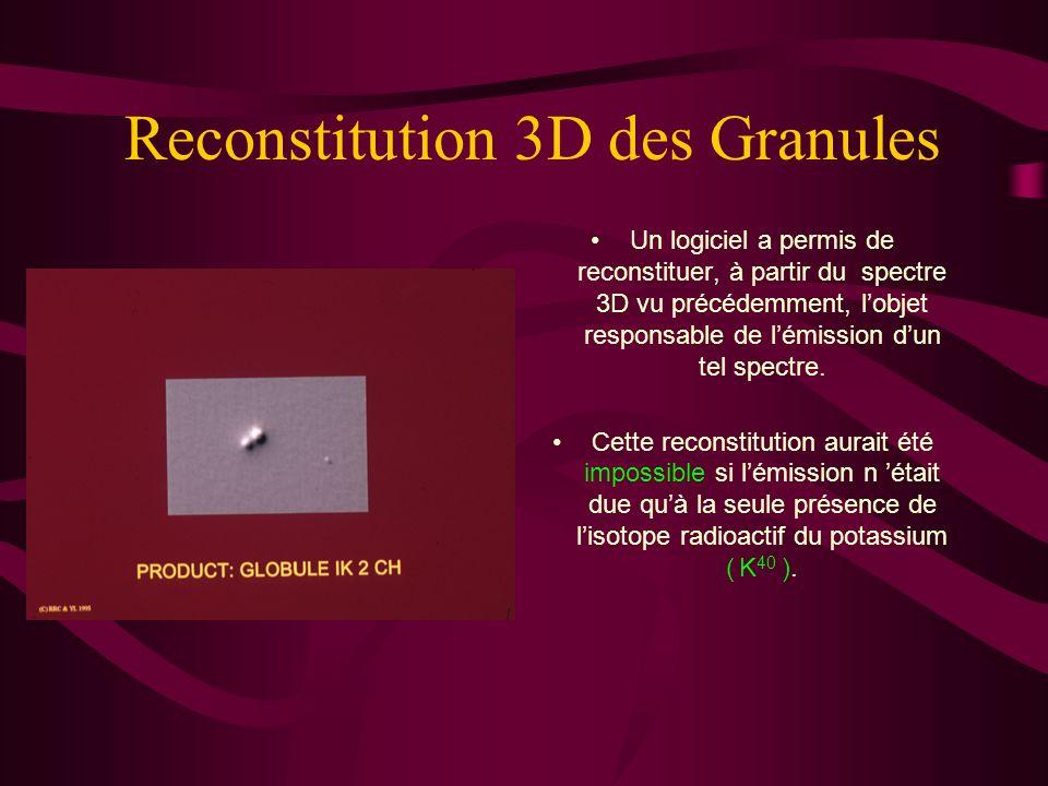 Reconstitution 3D des Granules