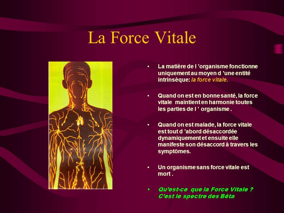 La Force Vitale La matière de l 'organisme fonctionne uniquement au moyen d 'une entité intrinsèque: la force vitale.