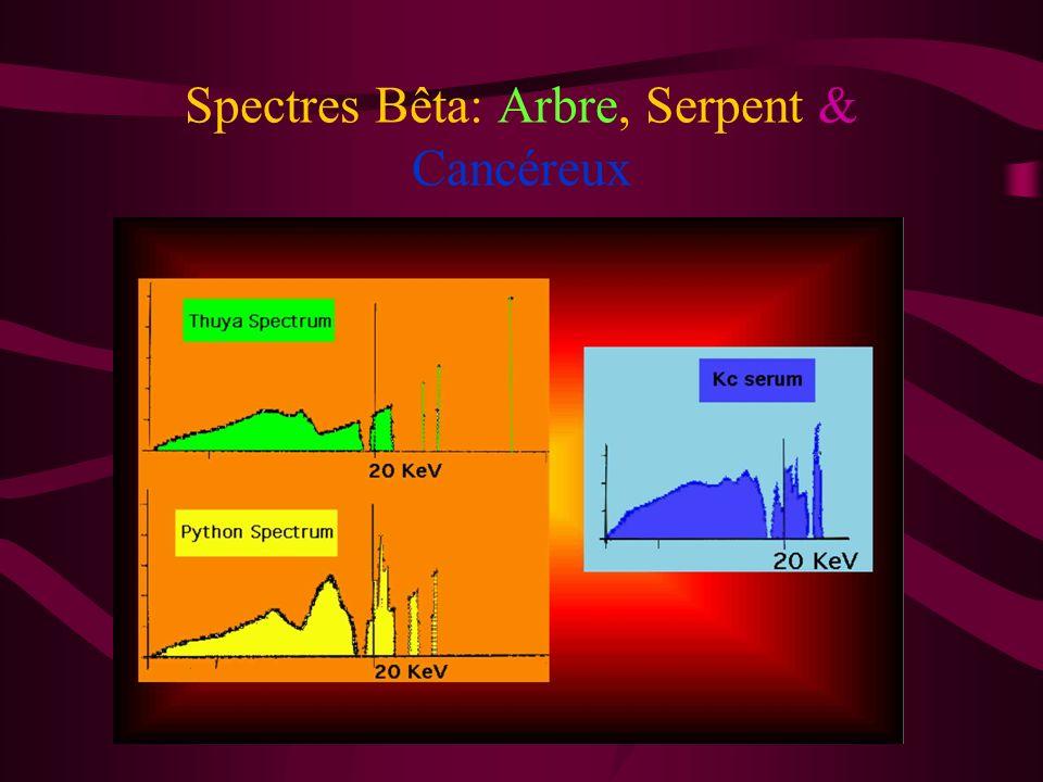 Spectres Bêta: Arbre, Serpent & Cancéreux