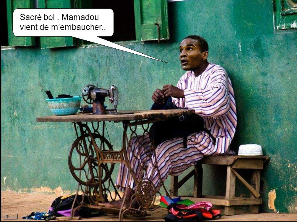 Sacré bol . Mamadou vient de m'embaucher..