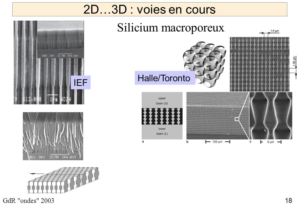 2D…3D : voies en cours Silicium macroporeux W. Vos Halle/Toronto IEF
