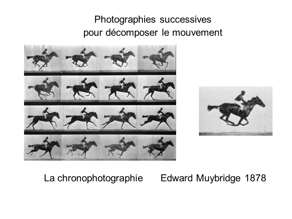 La chronophotographie Edward Muybridge 1878