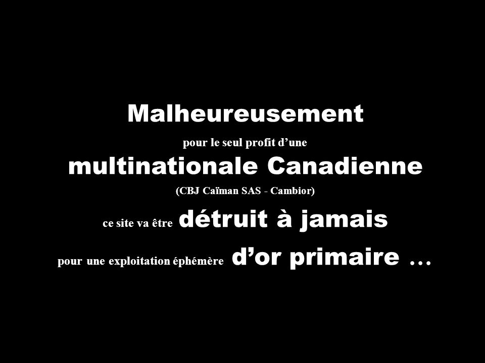multinationale Canadienne