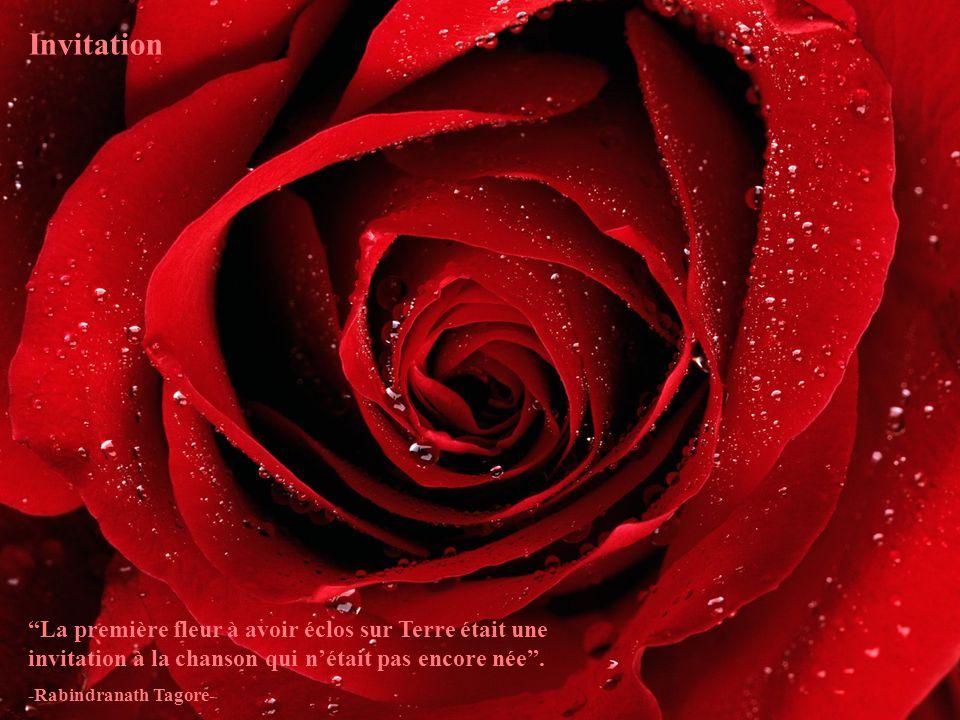 Invitation La première fleur à avoir éclos sur Terre était une invitation à la chanson qui n'était pas encore née .