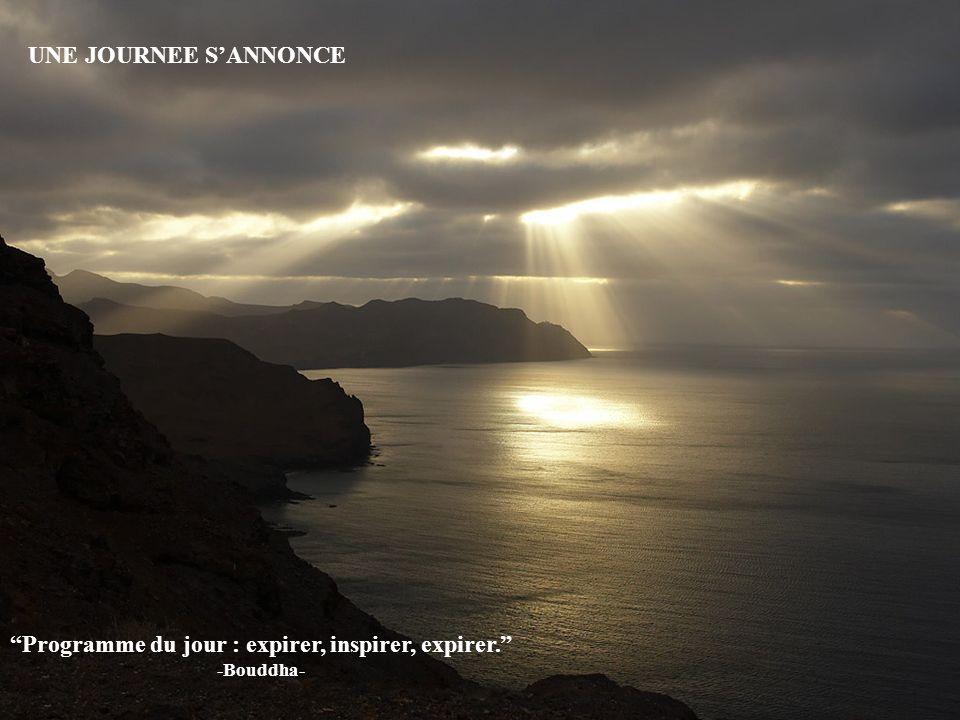 Programme du jour : expirer, inspirer, expirer. -Bouddha-