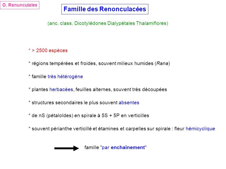 Famille des Renonculacées
