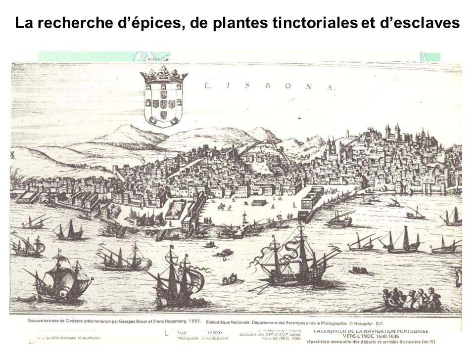 La recherche d'épices, de plantes tinctoriales et d'esclaves