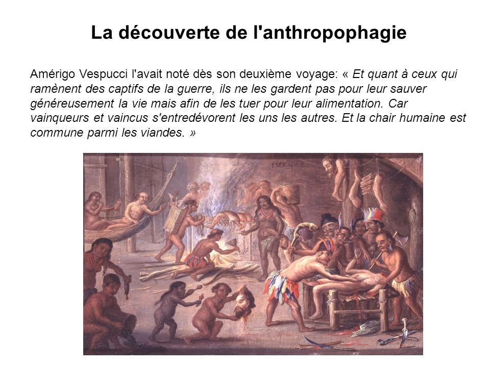 La découverte de l anthropophagie