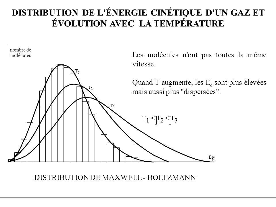 DISTRIBUTION DE L ÉNERGIE CINÉTIQUE D UN GAZ ET
