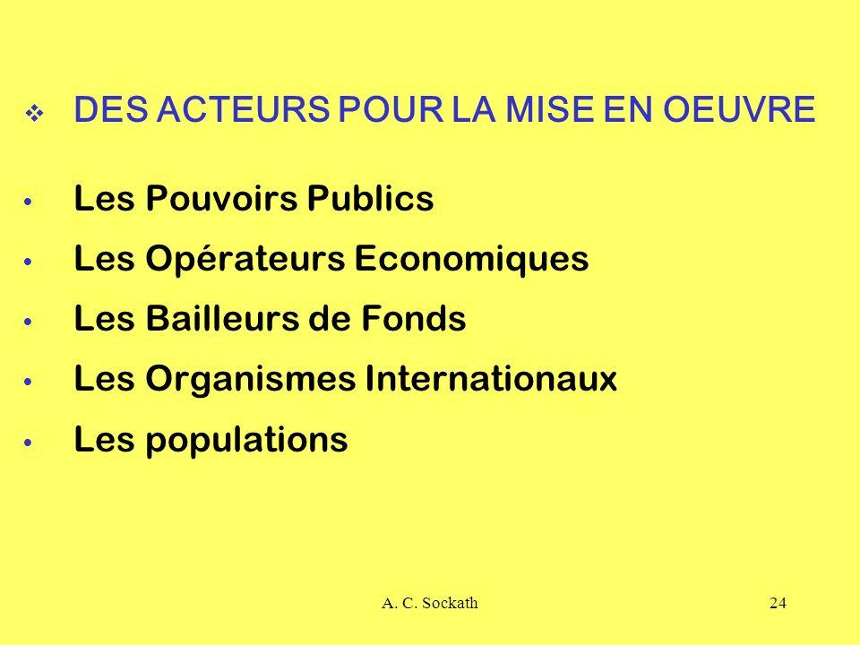 DES ACTEURS POUR LA MISE EN OEUVRE Les Pouvoirs Publics