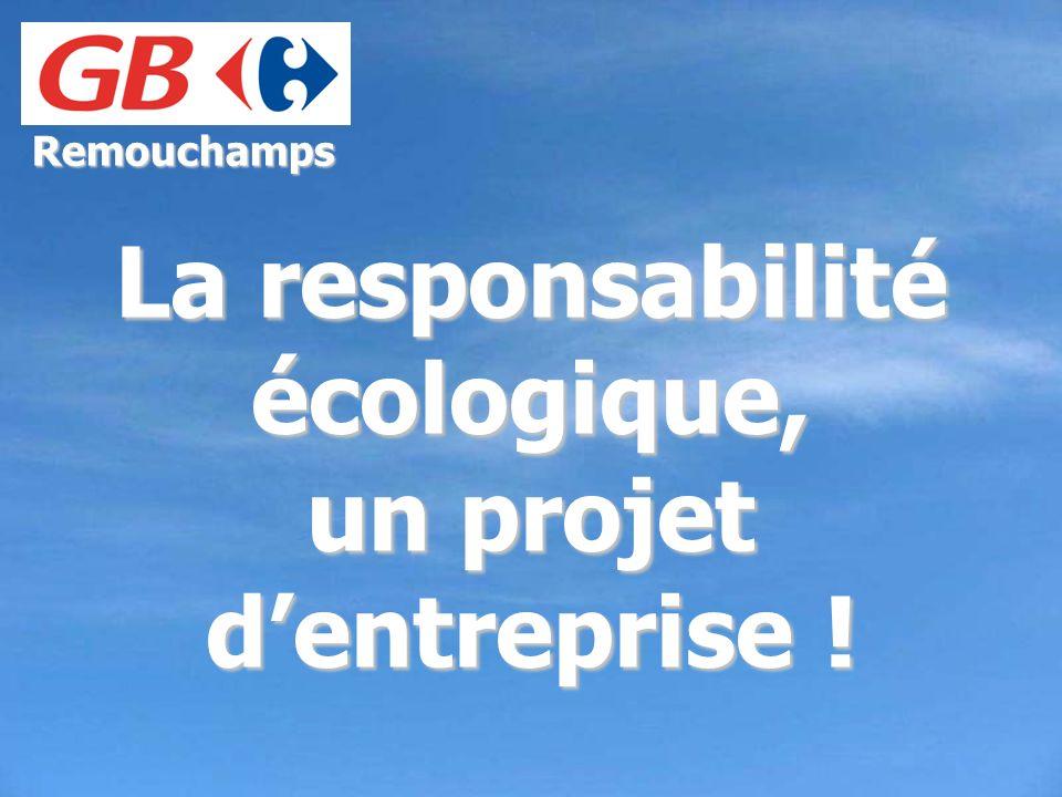 La responsabilité écologique, un projet d'entreprise !