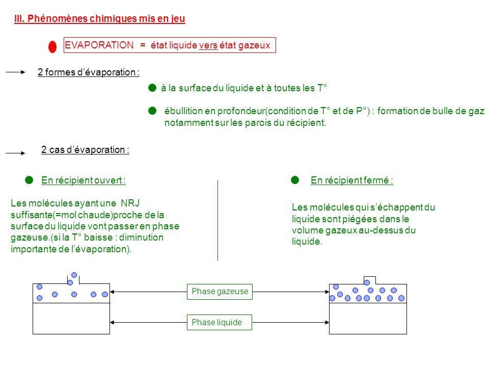 III. Phénomènes chimiques mis en jeu