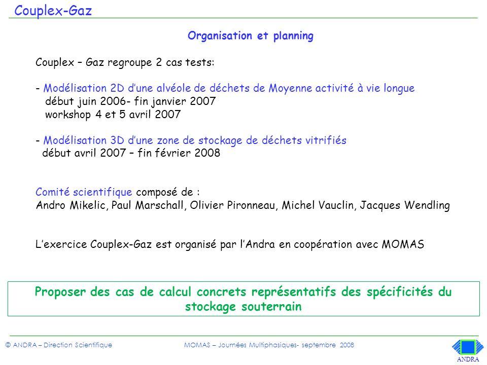 Couplex-Gaz Organisation et planning. Couplex – Gaz regroupe 2 cas tests: Modélisation 2D d'une alvéole de déchets de Moyenne activité à vie longue.