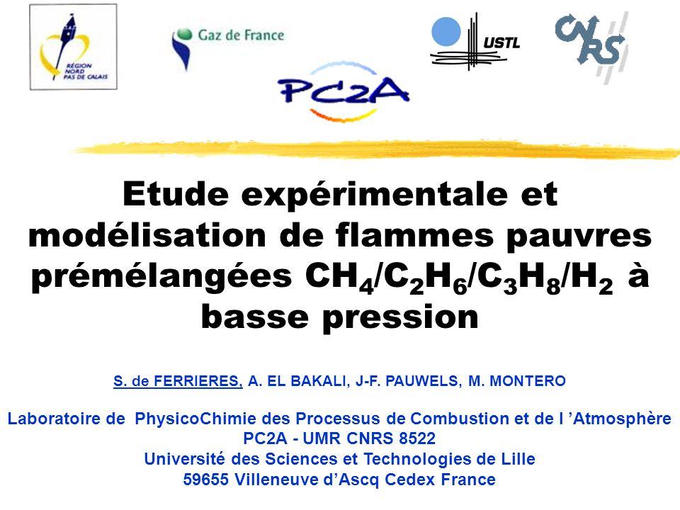 Etude expérimentale et modélisation de flammes pauvres prémélangées CH4/C2H6/C3H8/H2 à basse pression