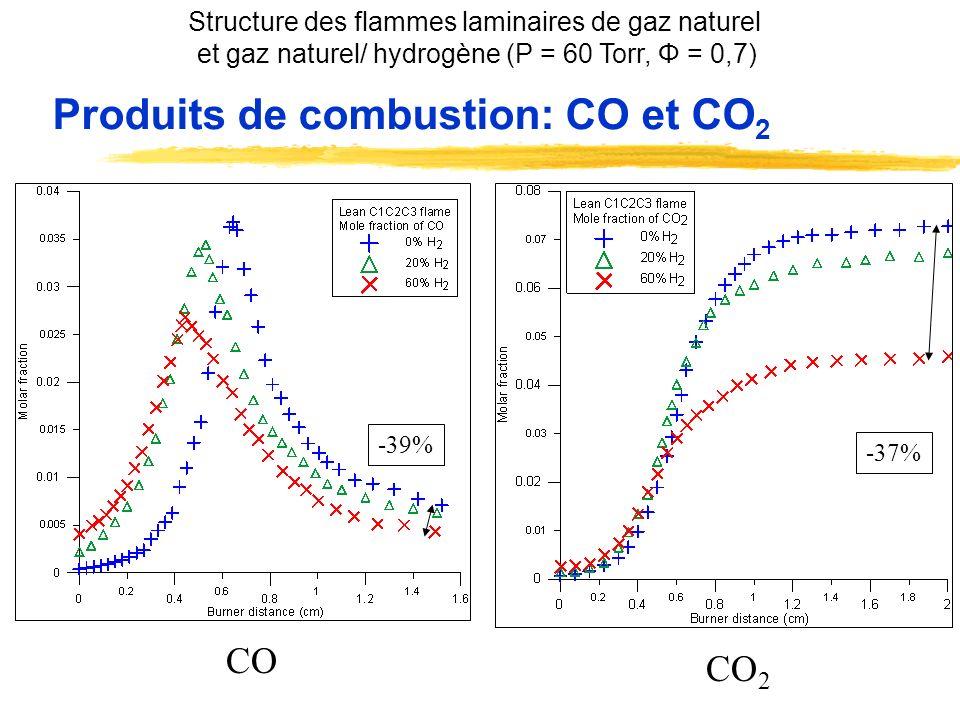Produits de combustion: CO et CO2