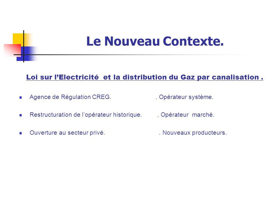 Loi sur l'Electricité et la distribution du Gaz par canalisation .
