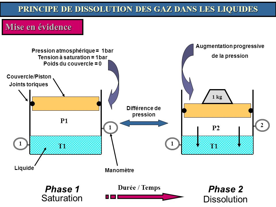 Mise en évidence Phase 2 Phase 1 Saturation Dissolution