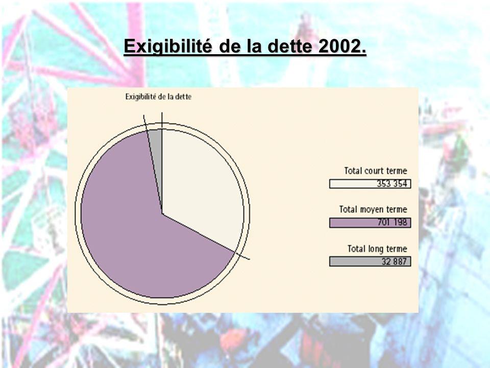 Exigibilité de la dette 2002.