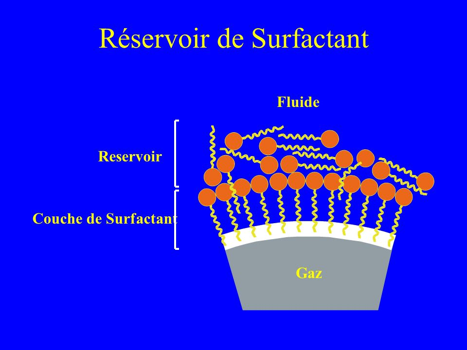 Réservoir de Surfactant