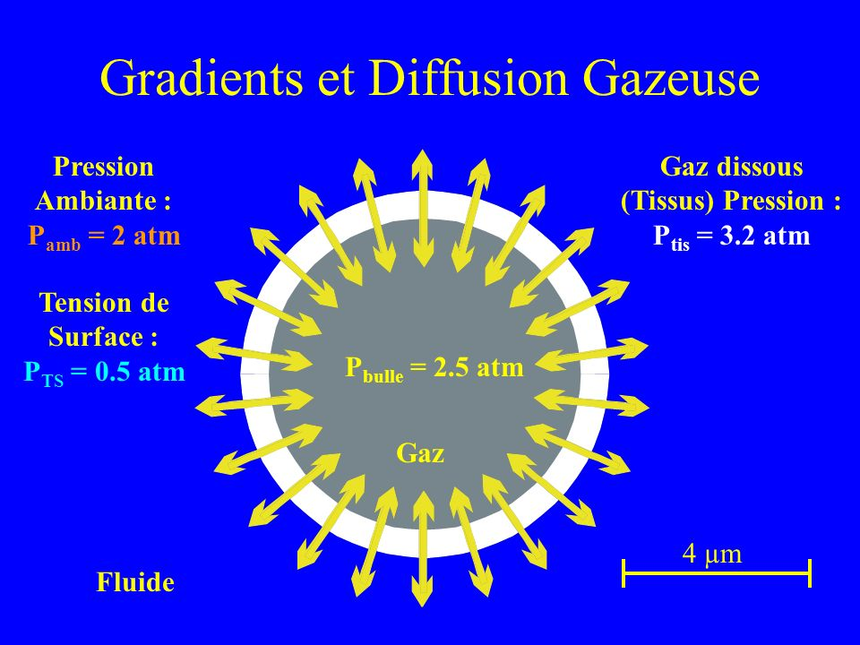 Gradients et Diffusion Gazeuse